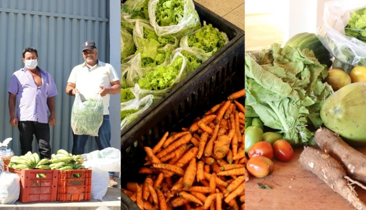 Prefeitura de Caetité recebe alimentos para execução do PAA e distribui para famílias carentes